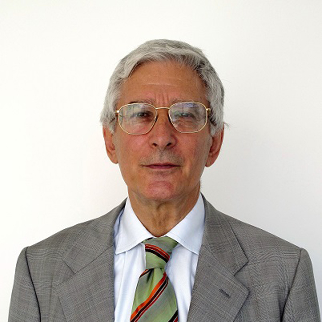 Fabrizio Onida GPFF - Professore ordinario di Economia internazionale presso l'Università Luigi Bocconi
