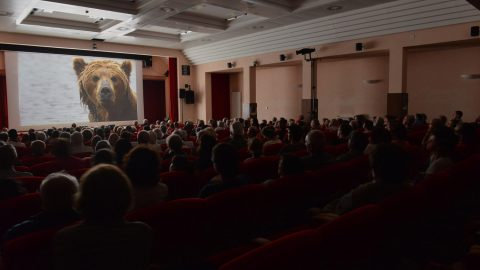 GPFF2018 Proiezione Concorso Internazionale Kamchactka Bears life begins Grivola Cogne