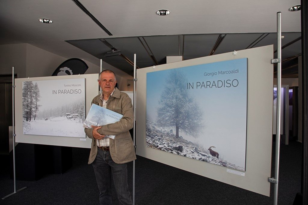 Mostra In Paradiso